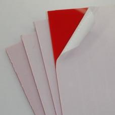 "1/8"" Red Plexiglas"